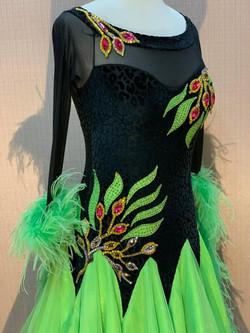 Ballroom Dresses for Sale