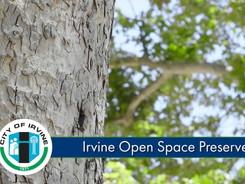 NCC - Irvine Open Space Preserve