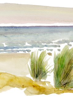 CA Ocean - 12