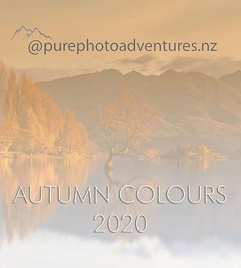 Autumn newsletter.jpg