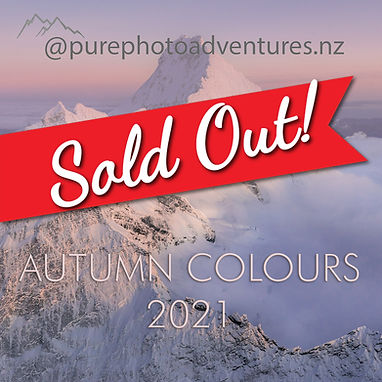 autumn-colours-2021-sold-out.jpg