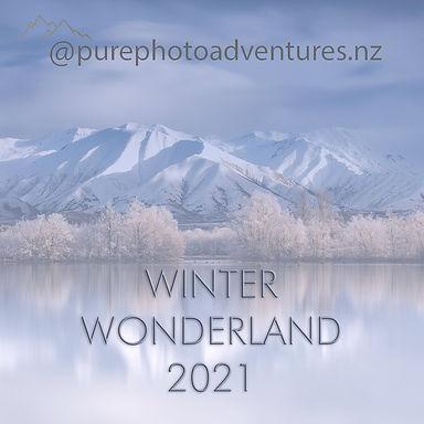 winter wonderland 2021.jpg