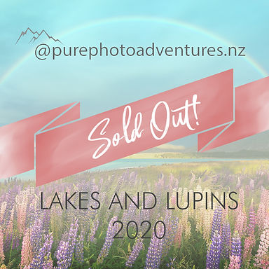 Lakes and Lupins 2020 sold out.jpg