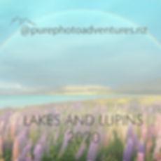 Lakes and Lupins 2020.jpg