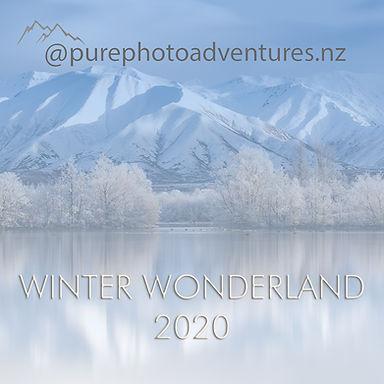 Winter newsletter.jpg