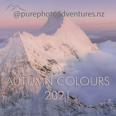 autumn colours 2021.jpg