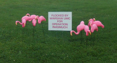 Flamingo flocking to help raise money for operation Inasmuch