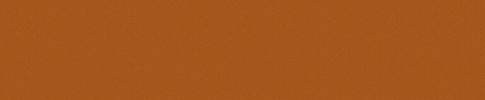 Orange banner.jpg