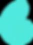 bid-day-green-nautilus-hi_edited.png
