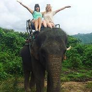 слоники.jpg