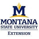 MSU Extension Logo.jpg
