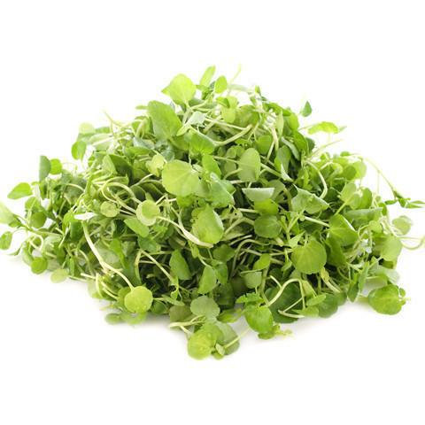 Local Watercress - Planet Earth Diversified