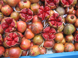 GTP Fruit