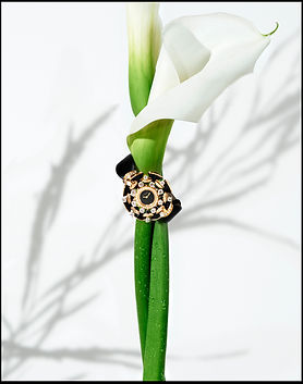 Mark Arrigo_bulgari watch flower.jpg