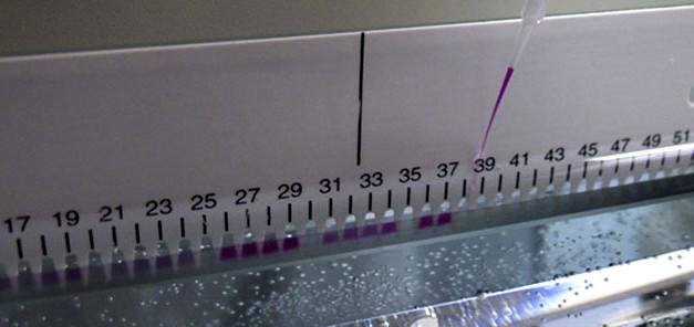 DNA-Sequenzierung-Gel