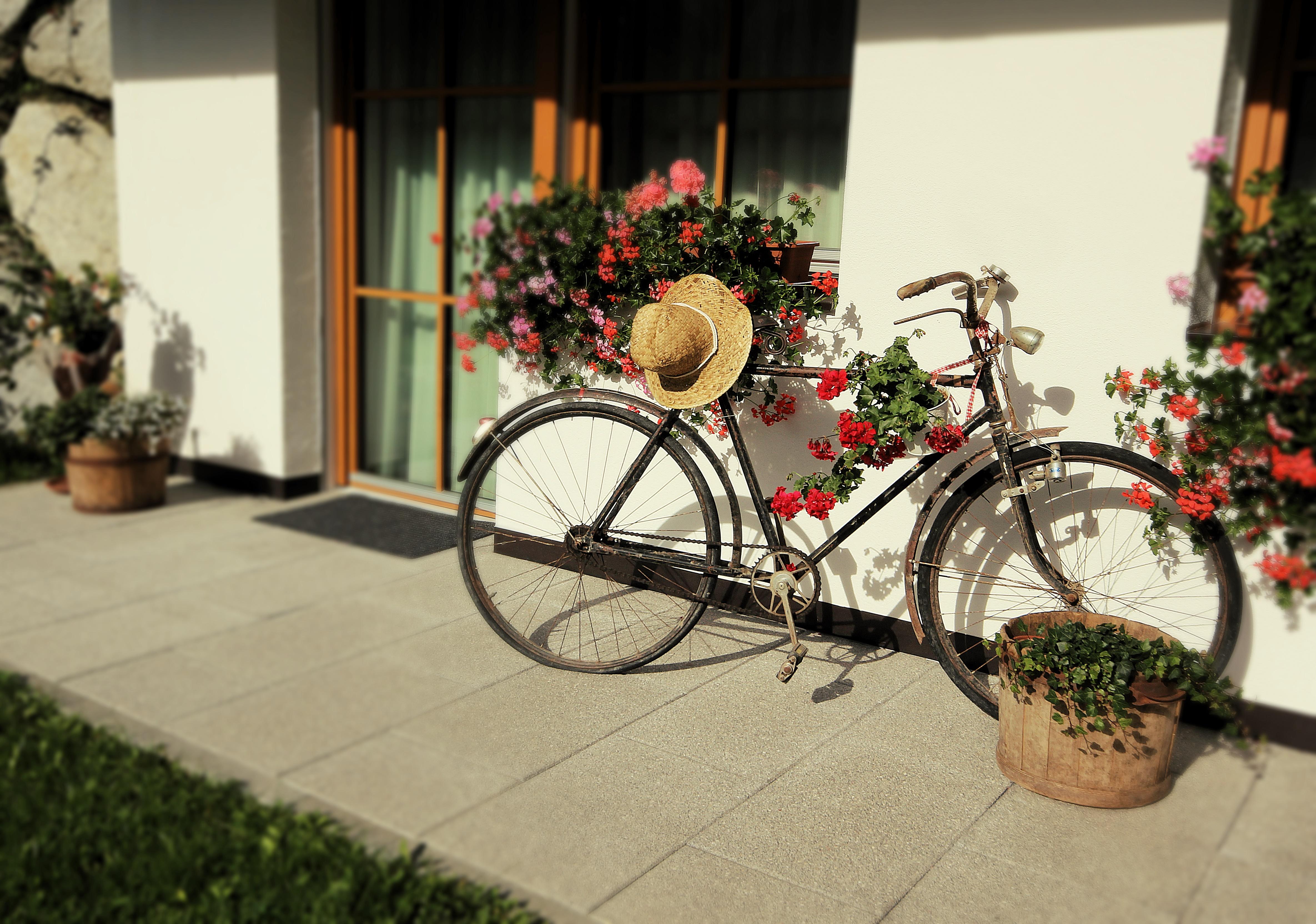 Residenz Erschbaum Fahrrad Sommer