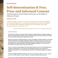 Self-determination & Free, Prior and Informed Consent