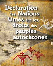 UN-Declaration-on-the-Rights-of-Indigeno