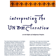 Interpreting the UN Declaration