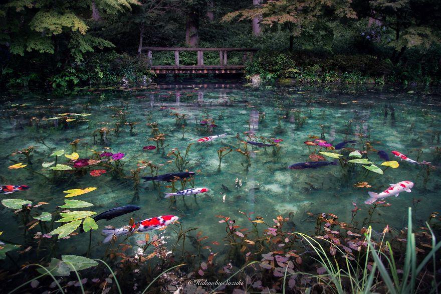 Gifu: Monet Pond