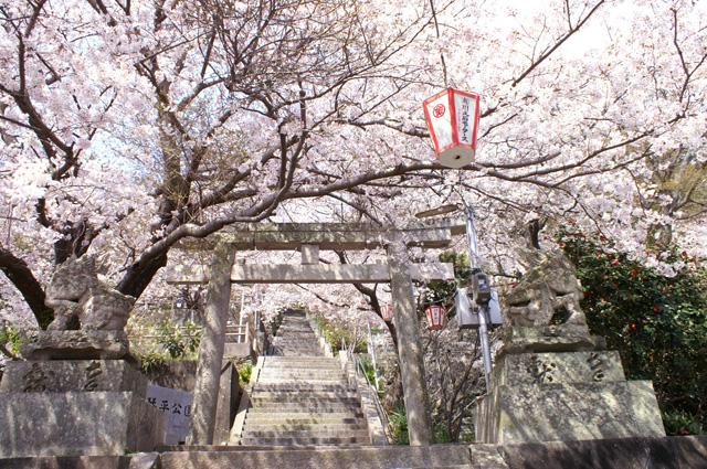 Kagawa: Konpira gu 金比羅宮