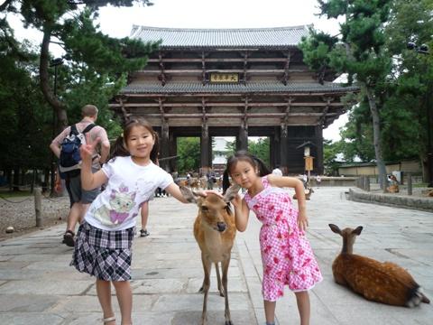 Nara: Nara Park