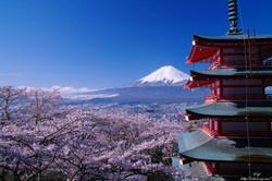 Yamanashi:Niikura Fuji Asama Shrine
