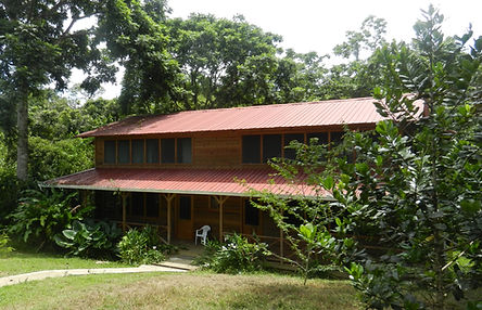 Institute for Tropical Ecology and Conservation field station, Bocas del Toro, Panama, Primate Ecology and Behavior, Sharon Kessler, primate, anthropology, biology, primatology, Isla Colon, module, couse, teaching