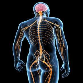 What is Neural Tension?