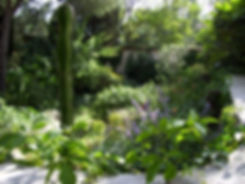 fond-jardin.jpg