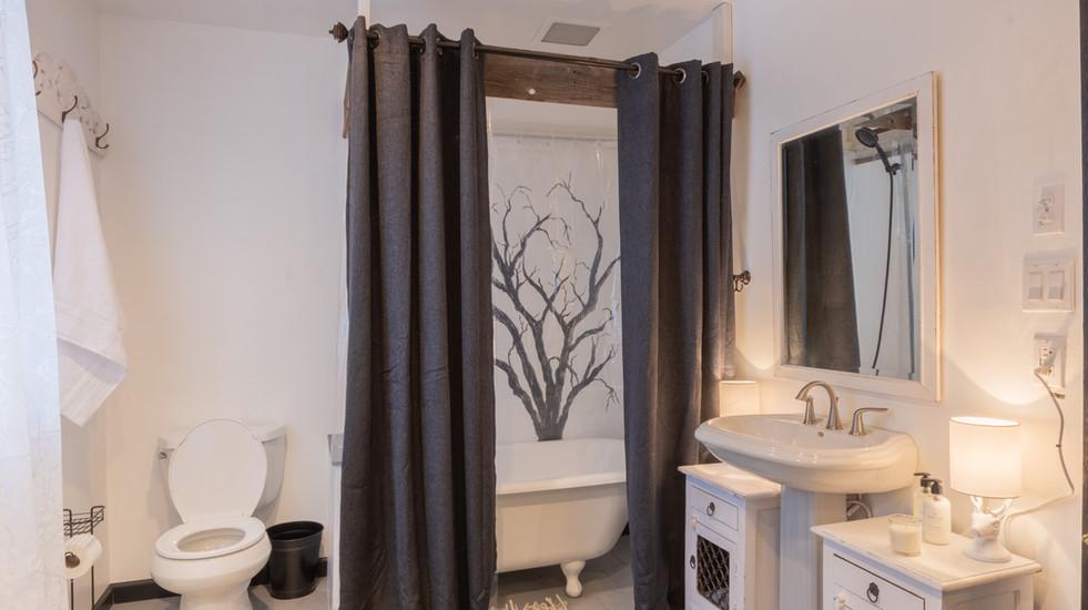 Newly renovated bathroom with clawfoot tub
