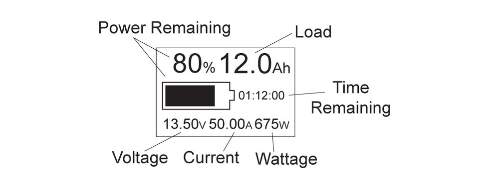 Ion-Ready LCD Display Diagram