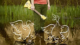 Mike Bryden with Ducks