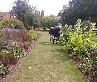 DM garden center.jpg