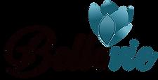 Bellevie logo.png