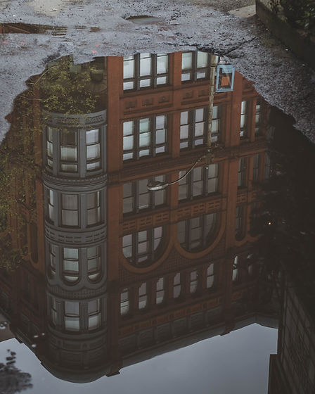Reflection on Water Puddle