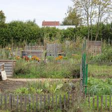 Herblay-Jardin-Potager-IMG_7815.JPG.jpg