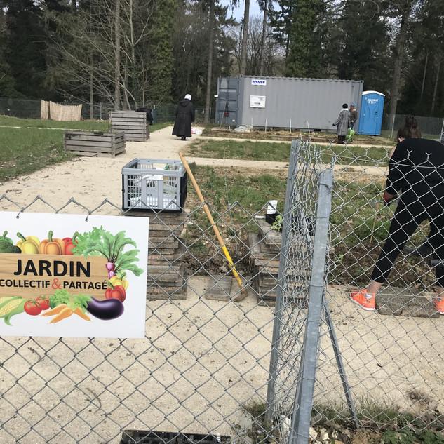 Epinay-sous-Sénart-Jardin Partagé-2018-0