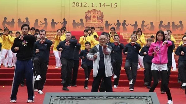 ip chun and sifu sean mann on sage performing si lim tao 2012