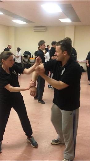 Mann Family School of Ip Man Wing Chun Kung Fu