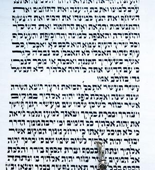 TorahCloseUp_edited.jpg