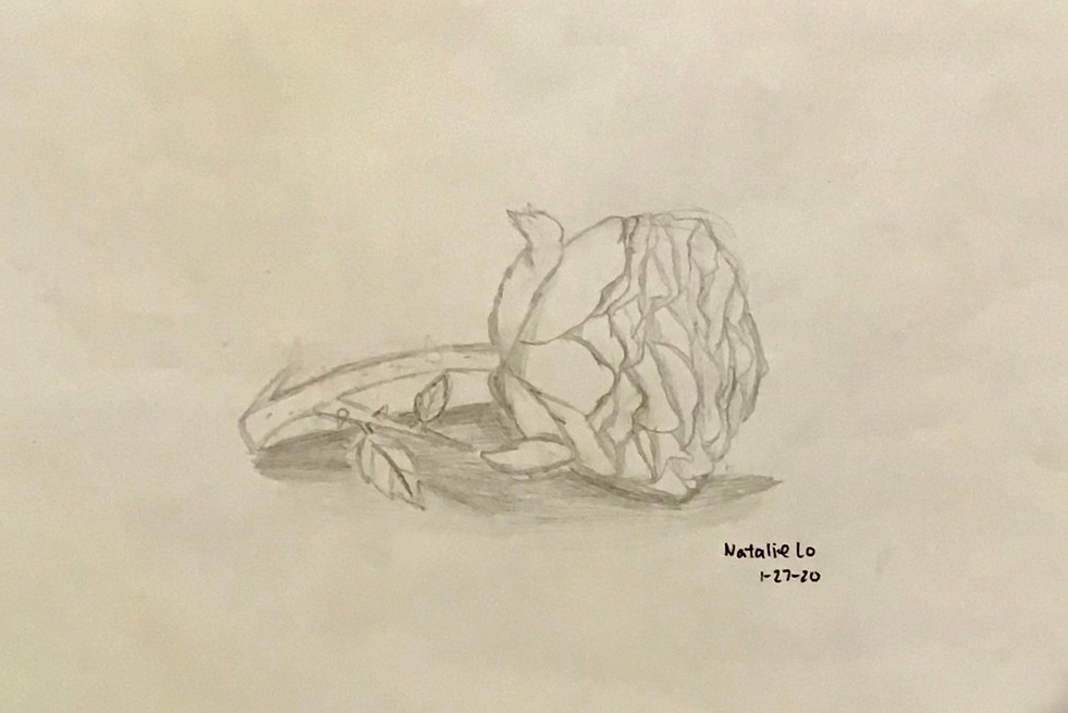 Natalie --  pencil drawing of R