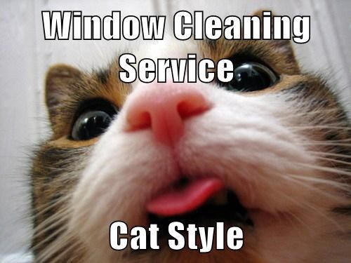 Olathe Window Cleaning