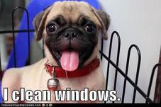 KCK Window Cleaning