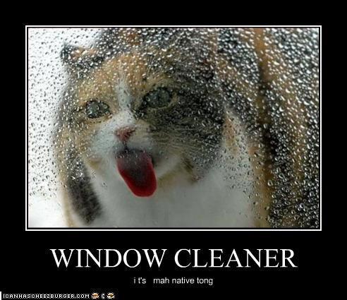 Lenexa Window Cleaning