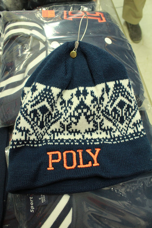 Poly Winter Hats