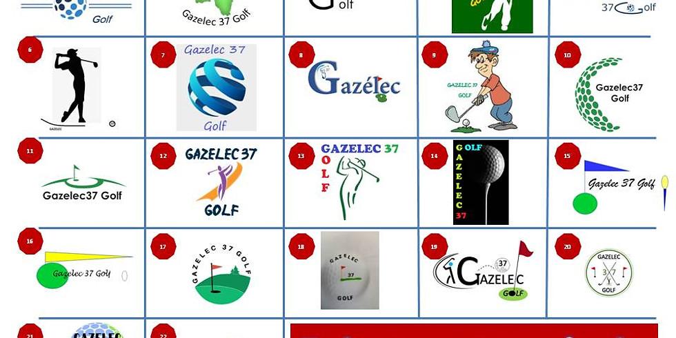Votez pour le logo de la section Golf du Gazelec 37 (1)