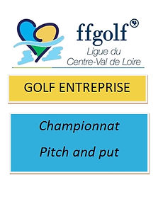 Logo Golf Entreprise Pitch and put..jpg