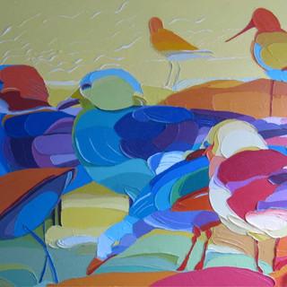 zeevogels.jpg