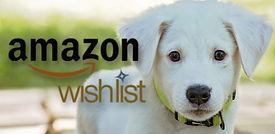 Amazon Wishlist 1.jpg